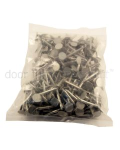Galvanised Extra Large Head Clout Nails 500g Bag