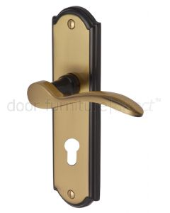 Howard Curved Lever Brass and Bronze 48mm Euro Cylinder Door Handles