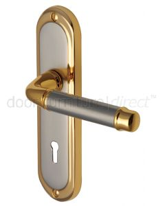 Saturn Straight Lever Dual Finish Keyhole Door Handles