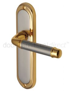 Saturn Straight Lever Dual Finish Latch Door Handles