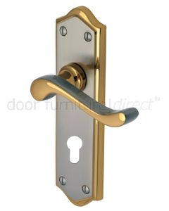 Buckingham Scroll Lever Dual Finish 48mm Euro Cylinder Door Handles