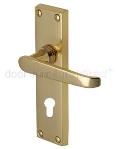 Victoria Straight Lever Polished Brass 48mm Euro Cylinder Door Handles