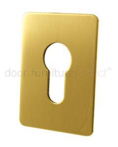 Self Adhesive EURO Escutcheon Brass