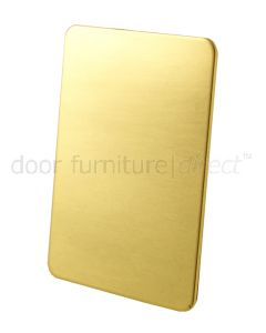 Brass Repair Plate