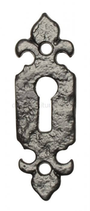 Antique Escutcheon 1493