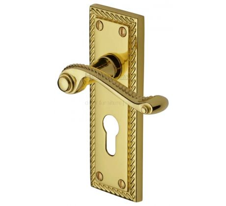 Georgian Polished Brass Rope Edge 48mm Euro Cylinder Door Handles