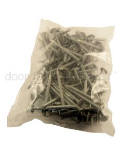 Galvanised Clout Nails 500g Bag